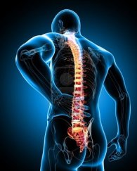 13757607-dolor-de-espalda - copia